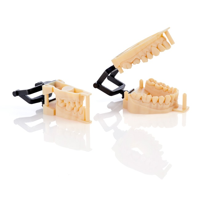 Stratasys crown and bridge quadrant