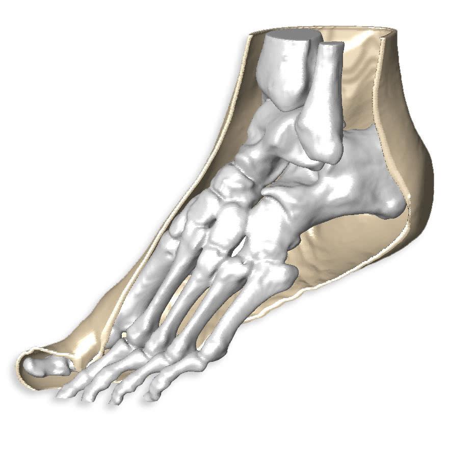 Segment 3dprint Foot